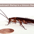RentSher_Cockroach