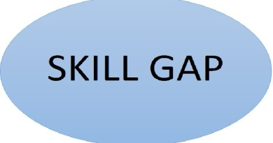 How to Bridge the Skill Gap for Your Next  Job